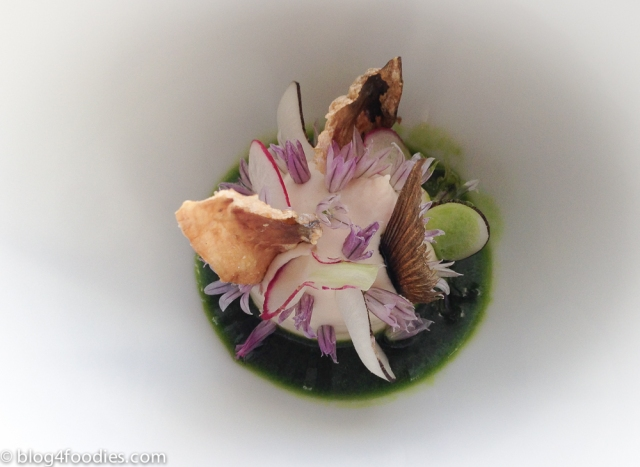 Mackerel | Radish | Pea