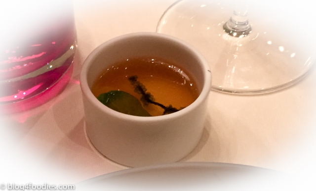 Pigeon broth